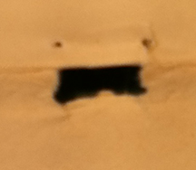 Torn paper which looks like a yelling face.