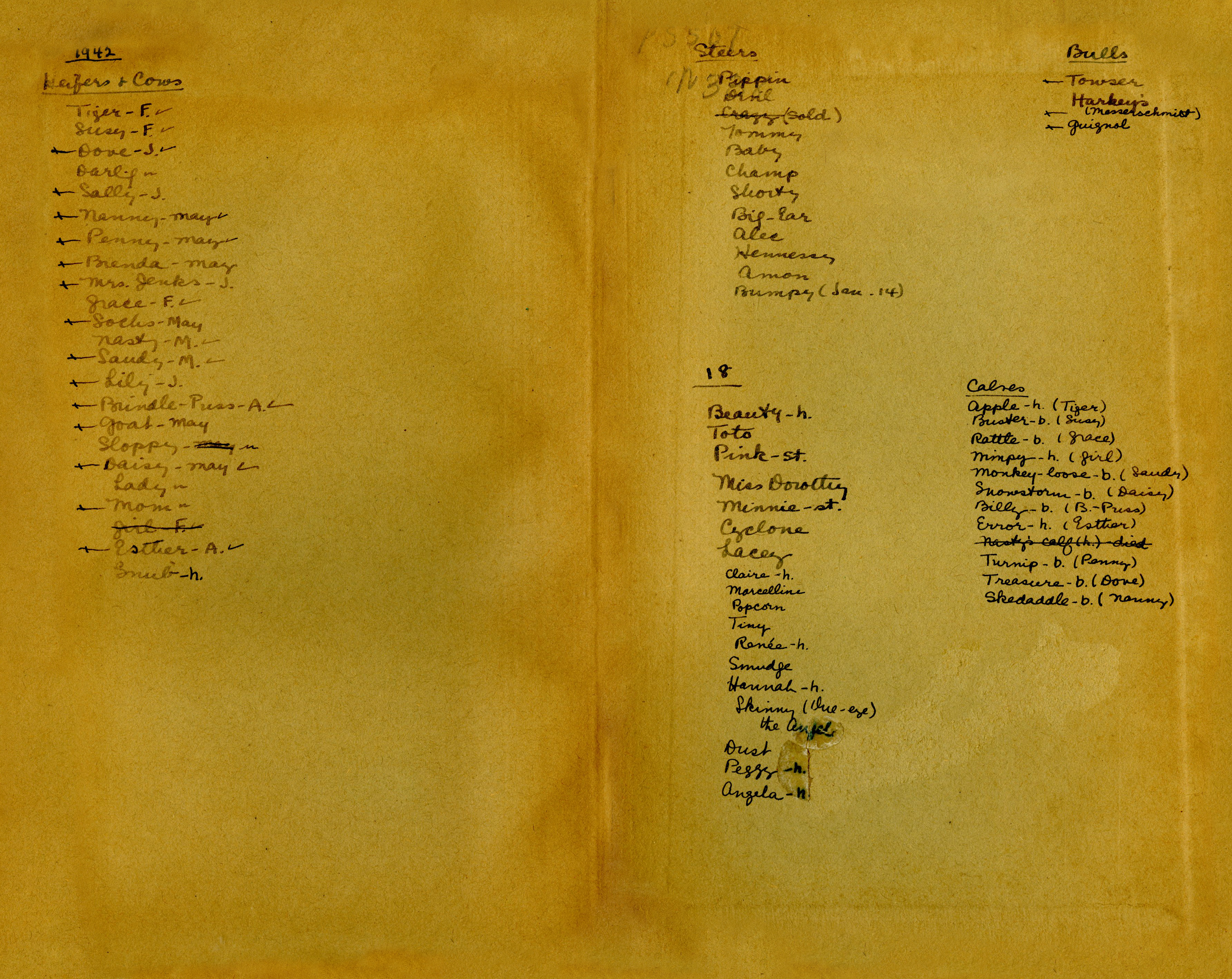 Endsheets of Americans Abroad with cow list