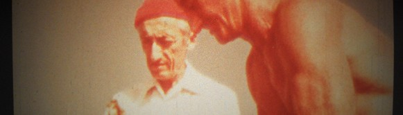 Screen shot of Cousteau.
