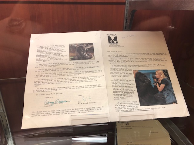 A printed newsletter with pictures of Koko the Gorilla and the gorilla's actual signature in ink.
