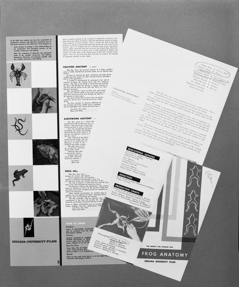 "Black and white photograph of film brochures for the program ""Frog Anatomy"""