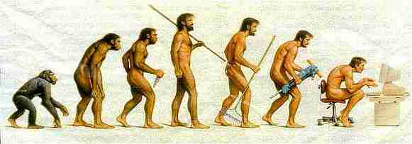 image showing evolution from chimpanzee to early human to modern human hunched over a computer